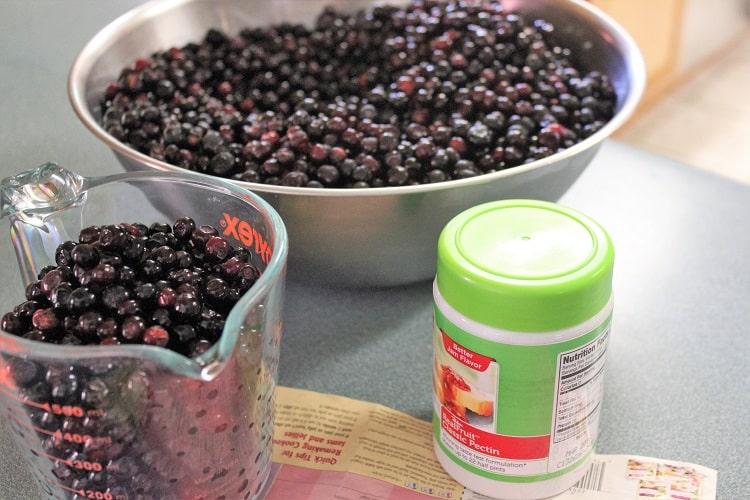 Bowl of Huckleberries - RMKK Companion