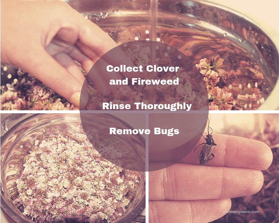 fireweed honey - rmkkcompanion