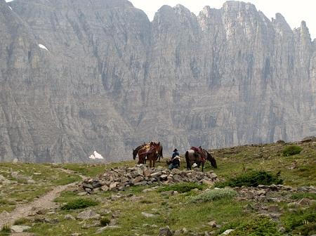 horses.Piegan. Glacier