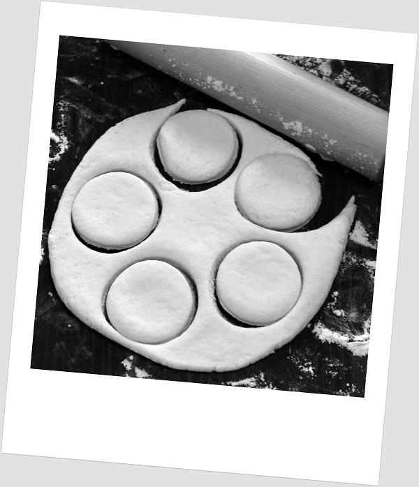 Homemade Biscuit Mix - RMKK Companion
