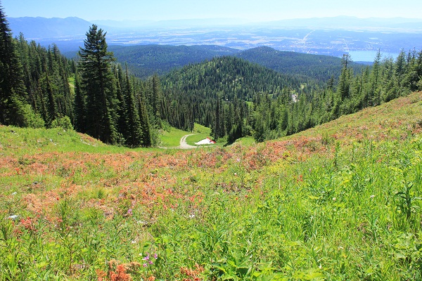 View of Flathead Valley from Danny On Trail, Big Mountain