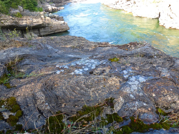 Stromatolite formations below the swinging bridge