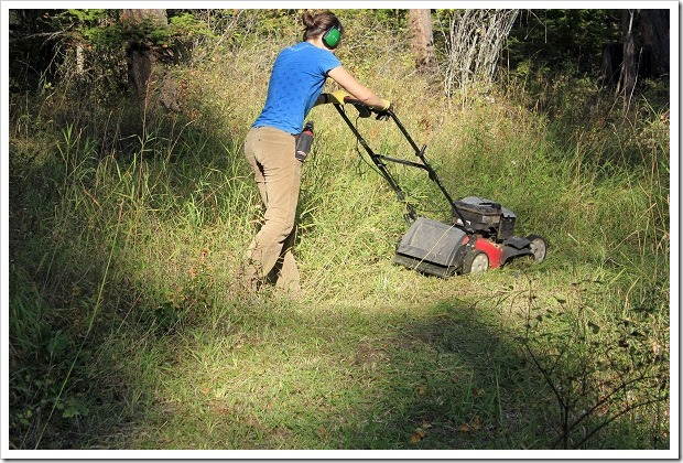 lawnmower.around trail
